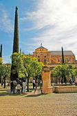 The cathedral in Cordoba, Andalucia Spain — Stock Photo