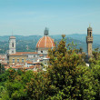Постер, плакат: View from the Boboli Gardens of the Duomo or Cathedral in Florence Italy