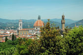 View from the Boboli Gardens of the Duomo or Cathedral in Florence Italy — Stock Photo