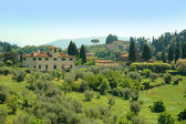 View from the Boboli Gardens over the countryside around Florence Italy — Stock Photo