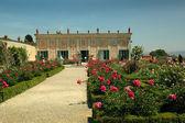 The Pitti Palace and Boboli Gardens, Florence, Italy. — Stok fotoğraf