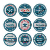 Vector set: vintage labels — Stock Vector