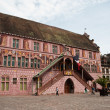 Old town hall in Mulhouse - Alsace - France — Stock Photo #50120829