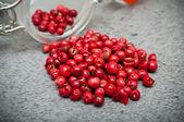 Red peppercorn — Stock Photo