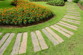 Pathway in the garden, beautiful landscaping of gardening — Stock Photo
