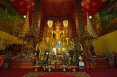 Buddha statue in temple buddhism at Wat Phra That Hariphunchai — Stock Photo