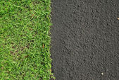 New asphalt road surface and green grass, background — Stock Photo