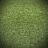 Green grass turf texture background — Стоковое фото