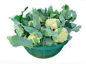 Cauliflower in the vegetable basket — Stock Photo