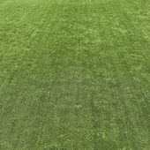 绿草草坪纹理背景 — 图库照片