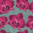 Seamless pattern with orchid. Texture of  flowers on green  background — Stock Photo #51652053