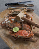 Hot Steamed Blue Crabs on wooden table — Stock Photo