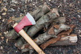 Axe and firewood in the ground — Stockfoto