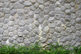 Brown stone plank wall with little green tree — Stock Photo