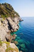 Rocky coast with clean blue see-through water. Portofino Italy — Stock Photo