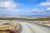 4X4 Safari in the Falkland Islands — Stock Photo