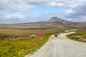 4X4 Safari in the Falkland Islands-4 — Stock Photo