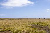 4 x 4-safari in de falkland eilanden-5 — Stockfoto