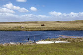 North Pond East Falkland island-2 — Stock fotografie