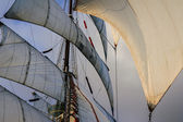 All sails raised -  favorable wind and ight — Stock Photo