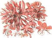 Orange chrysanthemum flowers — Stock Vector