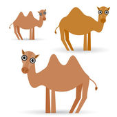 Funny camels — Stock Vector