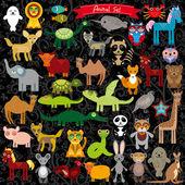 Funny  cartoon animals — Stock Vector