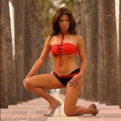 Bruno eric maillot de bain modèle en bikini sexy... un modèle exceptionnel — Photo
