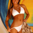 Постер, плакат: Beautiful Professional Model at Daytona Beach