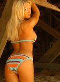 Tiffany Selby  - Playboy Playmate — Stok fotoğraf