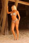 Tiffany Selby Playboy Playmate July 2007 — Stok fotoğraf