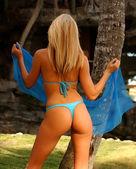 Blue Sexy String Bikini - Professional Model - Back View — Stock Photo
