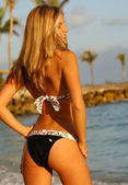 Black Bikini with White Trim and Belt - Back View - Pro Model — Stock Photo