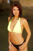 Published Brunette in Bikini — Stock Photo