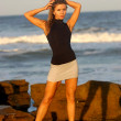 Постер, плакат: Black Top Silver Gray Skirt Ocean Wave and Rock Background