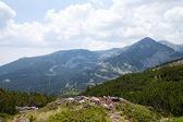 Pirin mountain National Park, Bulgaria — Stock Photo