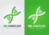 DNA Sandglass combination sign symbol. Creative Design. — Vetorial Stock