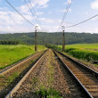 Railway line in spring time — Stock Photo #49493907