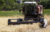 Harvest and combine — Stock Photo