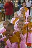 Girl monk in a row — Stok fotoğraf