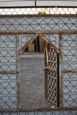 Private house door in Oman — Stock Photo