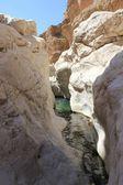 Moqul Cave paradise in Oman — Stockfoto