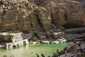Wadi Shab oasis in Oman — Stock Photo