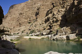 Wadi Ali oasis Umman — Stok fotoğraf
