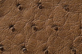 Closeup of seamless brown leather texture — Stockfoto