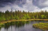 Finland landscape — Stockfoto