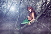 русалочка сидит на дереве — Стоковое фото