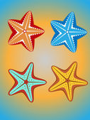 étoile de mer — Vecteur