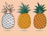Drei ananas — Stockvektor