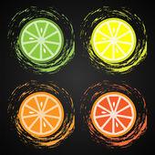 řezy z citrusových plodů — Stock vektor